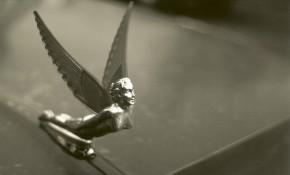 car hood angel