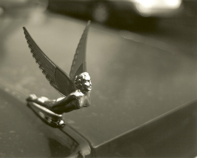 car hood angel